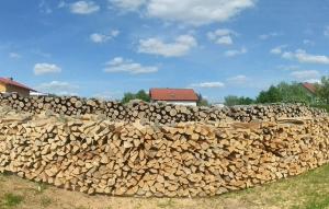 Energieholz, Hackgut und Brennholz